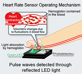 Heart Rate Sensor Operating Mechanism